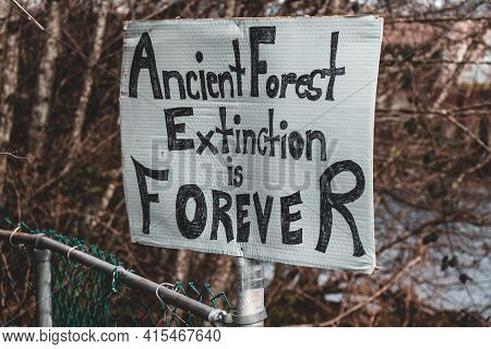 View Of Sign Ancient Forest Extinction Is Forever Attached To The Fence In Courtenay, Canada. Dying