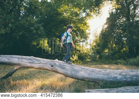 A Boy With A Backpack Walks Along The Trunk Of A Fallen Tree, A Child Walks Through The Forest, A Ki