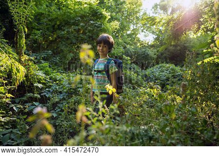 A Boy With A Backpack Walks In The Meadow, A Child Explores Wildlife, A Kid Stands Alone Among The T