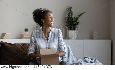 Smiling Biracial Woman Unbox Package Shopping Online