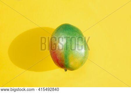 Unripe Mango Fruit, Stages Of Ripening Tropical Fruit. Yellow Background