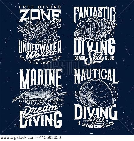 Tshirt Print With Sketch Sea Shells And Corals For Apparel Design. Vector Labels With Conch And Typo