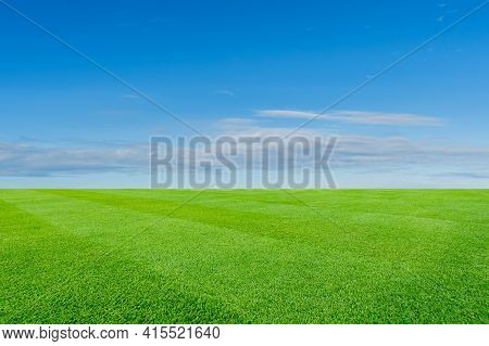 Green Meadow And Blue Sky Background. Natural Landscape With Green Grass Field.