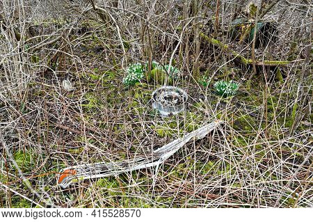 Old Fender And Rim Lying In Forest
