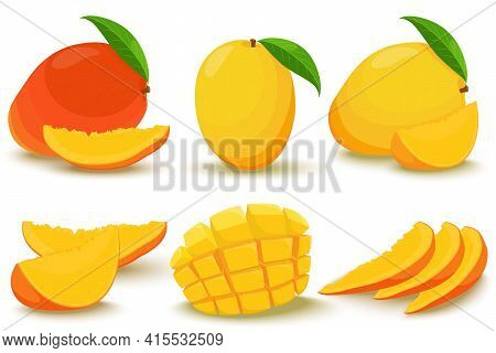 Mango. Whole And Pieces. Bright Vector Set Of Colorful Half, Slice And Whole Mango. Fresh Cartoon Ex