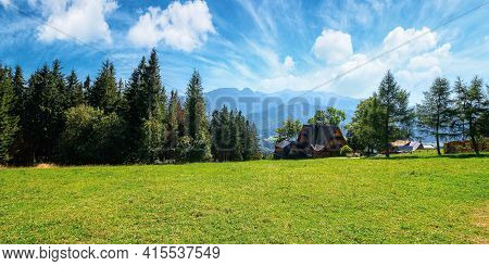 Zakopane Rural Landscape In Tatra Mountains. Spruce Trees On The Green Grassy Meadow Of Gubalowka Ra