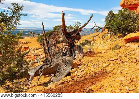 Magical landscapes of the west of the USA. Red-brown canyons, ledges, mesas and outliers are composed of soft sedimentary rocks