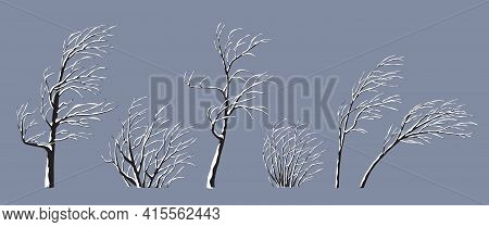 Set Of Snow Covered Trees And Bushes Without Leaves Isolated On Gray. Winter Season, Windy Weather,