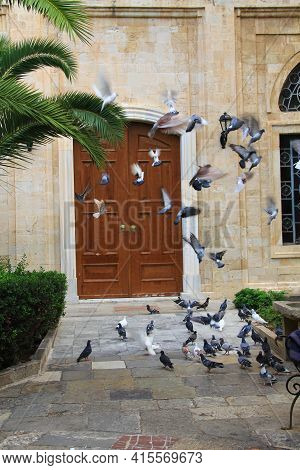 Pigeons Outside A Side Door Of The Church Of Ayios Titos Near August 25th Street In Heraklion, Crete