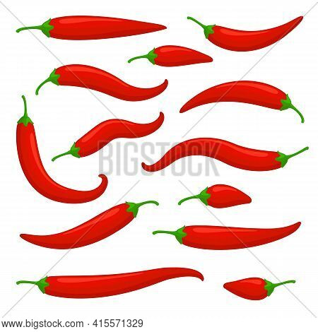 Closeup Red Chilly Pepper Vector Set. Hot Red Chili Peppers, Mexican Chilli Isolated On White Backgr