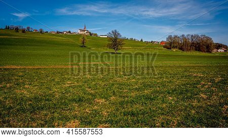 Idyllic Landscape. View Of Agriculture Field, Trees And Houses In Switzerland. Tranquil Scene.