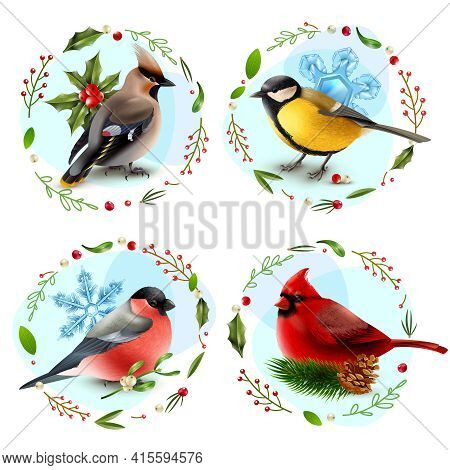 Design Concept With Winter Birds, Snowflakes, Spruce Branch, Decorative Frames From Berries And Leav