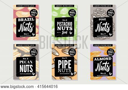 Sketch Natural Healthy Food Posters With Nuts Of Different Types And Sorts In Vintage Style Vector I