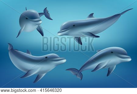 Dolphins Realistic. Ocean Or Marine Animals Swim Fishes With Flippers Deep Blue Sea Underwater Fauna