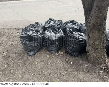 Collected In Black Bags Of Fallen Leaves On A City Street. Black Plastic Bags Full Of Leaves. Cleani