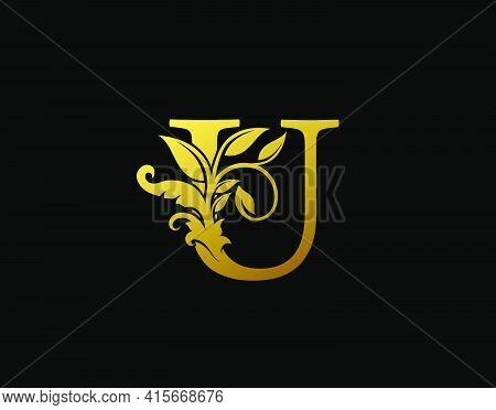 Luxury U Letter Design. Graceful Ornate Icon Vector Design. Vintage Drawn Emblem For Book Design, Br