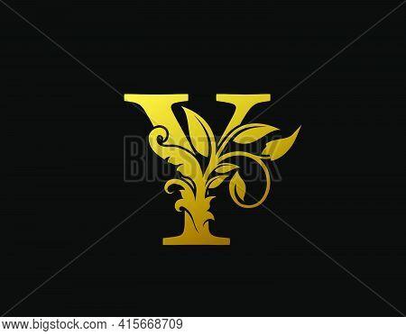 Luxury Y Letter Design. Graceful Ornate Icon Vector Design. Vintage Drawn Emblem For Book Design, Br