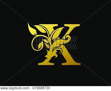 Luxury X Letter Design. Graceful Ornate Icon Vector Design. Vintage Drawn Emblem For Book Design, Br