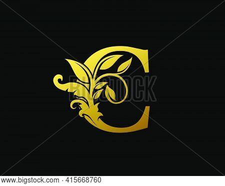 Luxury C Letter Design. Graceful Ornate Icon Vector Design. Vintage Drawn Emblem For Book Design, Br