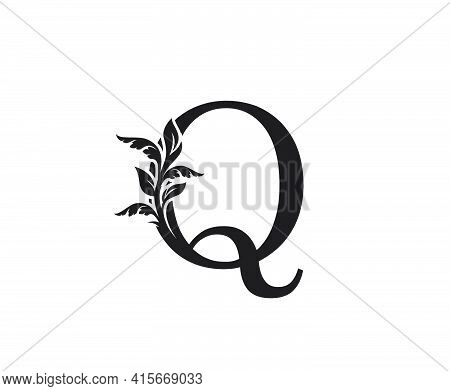 Classic Letter Q Heraldic Logo. Vintage Classic Ornate Letter Vector.