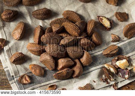 Raw Brown Organic Brazil Nuts
