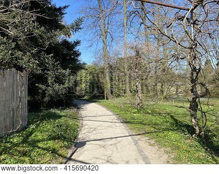 Japanese Garden (jardin Japonais), Conservatory And Botanical Garden Of The City Of Geneva (conserva