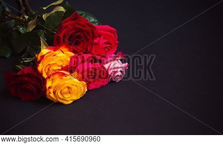 Bunch Of Colorful Roses  On Dark Background.  Selective Focus. View With Copy Space.