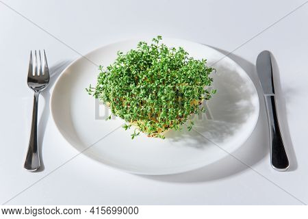 Fresh Sprouts Of Cress On White Plate And Cutlery On Sides On White Background. Growing Microgreens