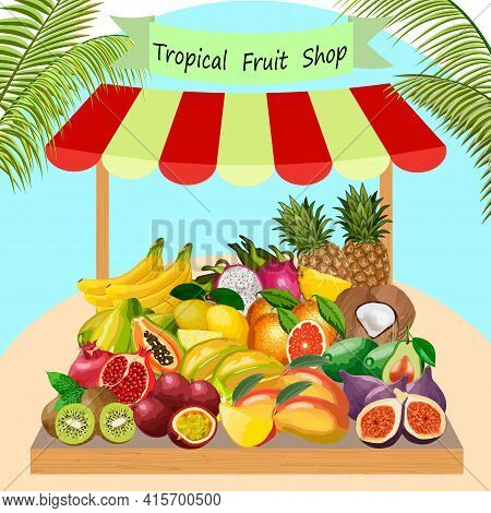 Illustration With Fruits On The Counter.tropical Fruits On The Counter Of The Trade Tent In Vector I