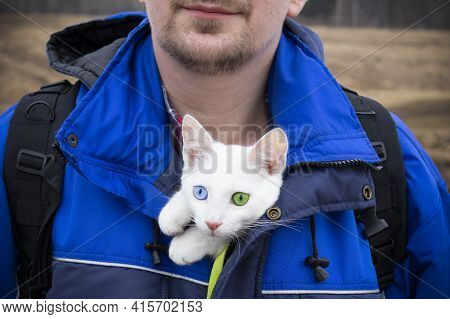 Smiling Man Half Face In Blue Jacket With White Kitten With Blue And Green Eyes In His Bosom, Close-