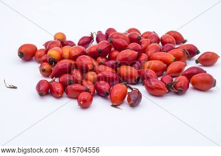 Rosehip On A White Background. Medicinal Berries. Rosa Canina. Wild Rose. Hip Bush.