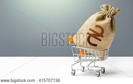 Ukraine Hryvnia Money Bag In A Shopping Cart. Business And Trade Concept. Public Budgeting. Profits