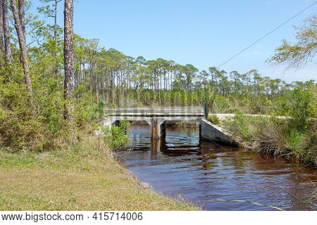 Bridge Over Water And Edge Of Pine Forest In Bon Secour National Wildlife Refuge In Gulf Shores, Ala