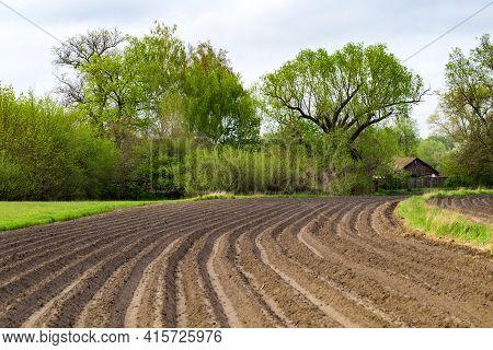 View Of Freshly Plowed Field In Spring. Farmland. A Close-up Of Furrows In A Freshly Plowed Field. A