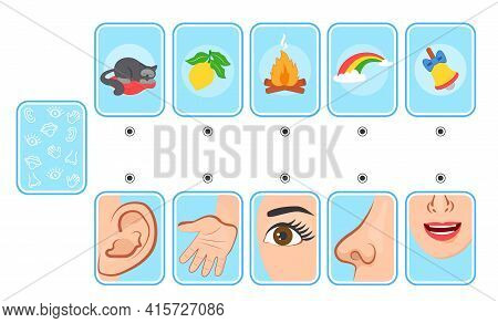 Game For Kids. Cards. Five Senses. Sight, Touch, Hearing, Smell And Taste. Preschool Worksheet Activ