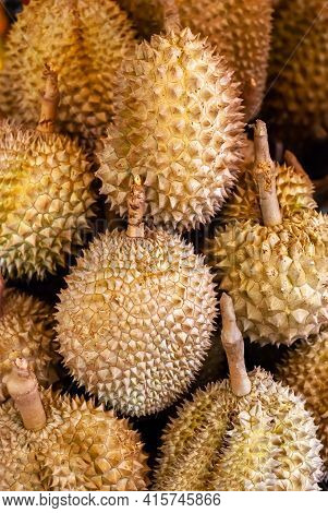 Fresh And Ripe Durian On Display For Sale