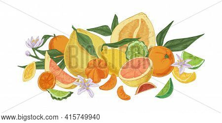 Composition Of Different Tropical Citrus Fruits. Fresh Juicy Orange, Lemon, Bergamot, Grapefruit, Li
