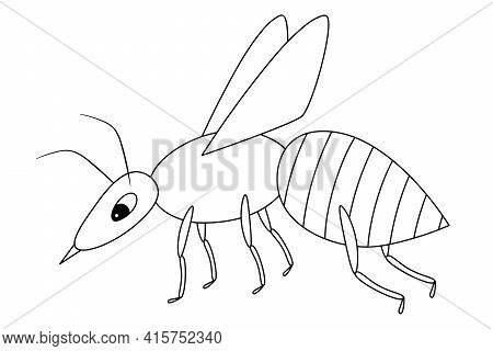 Wasp. Sketch. A Small Fly With A Sting. Vector Illustration. Coloring Book For Children. An Insect W