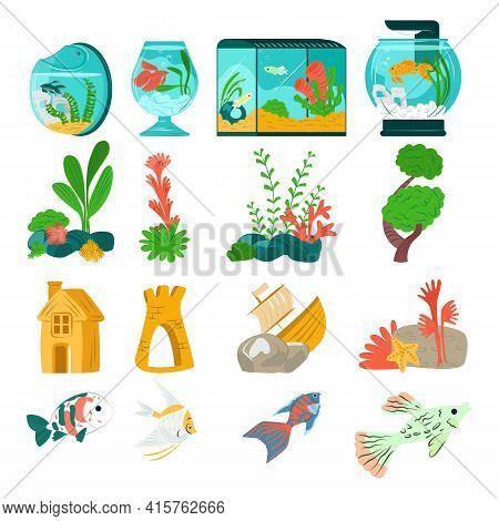 Beautiful Aquarium Set Fish, Vector Illustration. Aquatic Collection Designer Fauna In Glass Tank. M