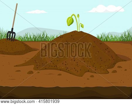Dirt Piles. Hummus Peat Soil With Growing Plant Flowers Sprouts, Sprigs, Stones.