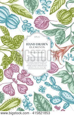 Card Design With Pastel Ficus, Iresine, Kalanchoe, Calathea, Guzmania Cactus Stock Illustration