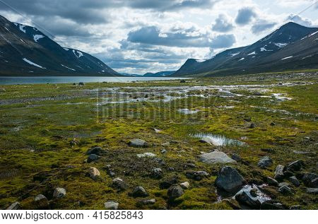 Swedish Lapland landscape. lake Reaiddajavri in Stuor Reaiddavaggi valley in northern Sweden. Arctic mountain environment of Scandinavia in cloudy summer day