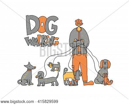 Dog Walking Service. Handsome Boy Standing With Different Pets. Young Person Keeps The Dogs On The L