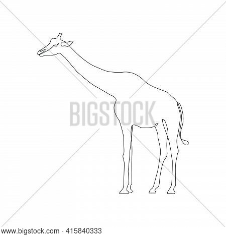 Minimalist One Line Giraffe Icon. Line Drawing Animal Tattoo. Giraffe One Line Hand Drawing Continuo