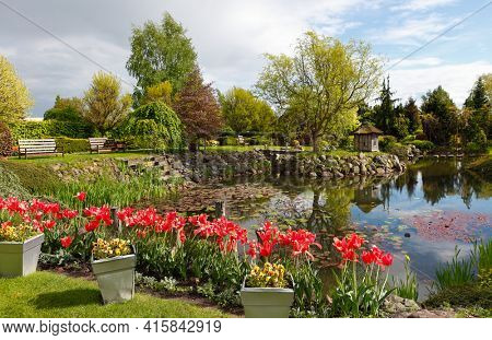 Spring garden with a pond and flowers