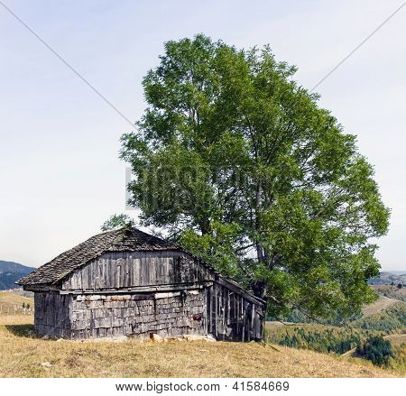 Abandoned House In Carpathian Mountains