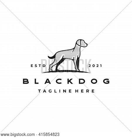 American Bulldog / Pitbull Logo Design Vector Illustration