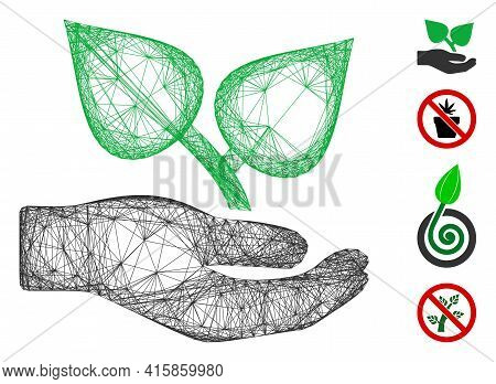 Vector Wire Frame Flora Care Hand. Geometric Linear Frame 2d Network Generated With Flora Care Hand