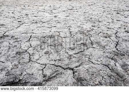 Eroded Land. Ecology Concept. Dry Ground. Cracked Earth. New Life. Concept Of Global Warming.