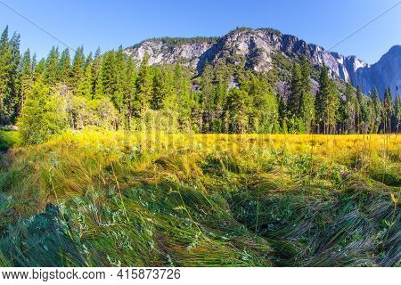 Western Cordillera. The famous rock-monolith El Capitan. Yosemite Park is located on the slopes of the Sierra Nevada. Yosemite Valley. The park is declared a World Heritage Site